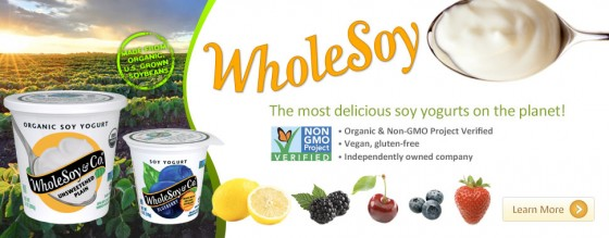 Whole Soy & Co Yogurt
