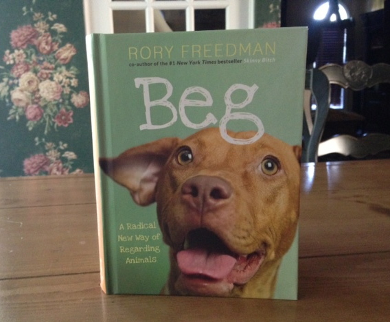 Beg by Rory Freedman