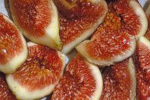 220px-Figs