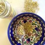 Fabulous Fennel: Big Health Benefits from Dr. Oz's Fennel Tea, Ina Garten's Crusty Fennel Casserole & Raw Fennel Salad