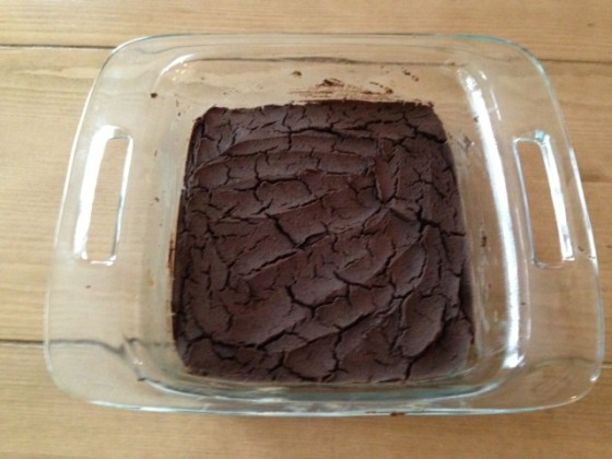Dr. Fuhrman's Fudgy Black Bean Brownies Without The Frosting