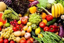 permanate jjournal plant based diet