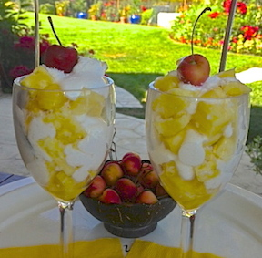http://veganamericanprincess.com/pineapple-parfait-express-a-vegan-pina-colada-treat/