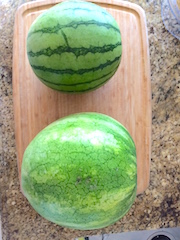 Large and Small Watermelons